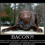 Give Dog Bacon, Dog Loves Bacon ! Demotivational