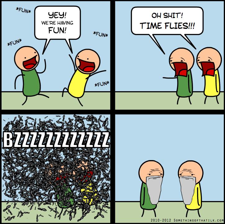 Time Flies When You're Having Fun, Comic By SomethingofThatilk