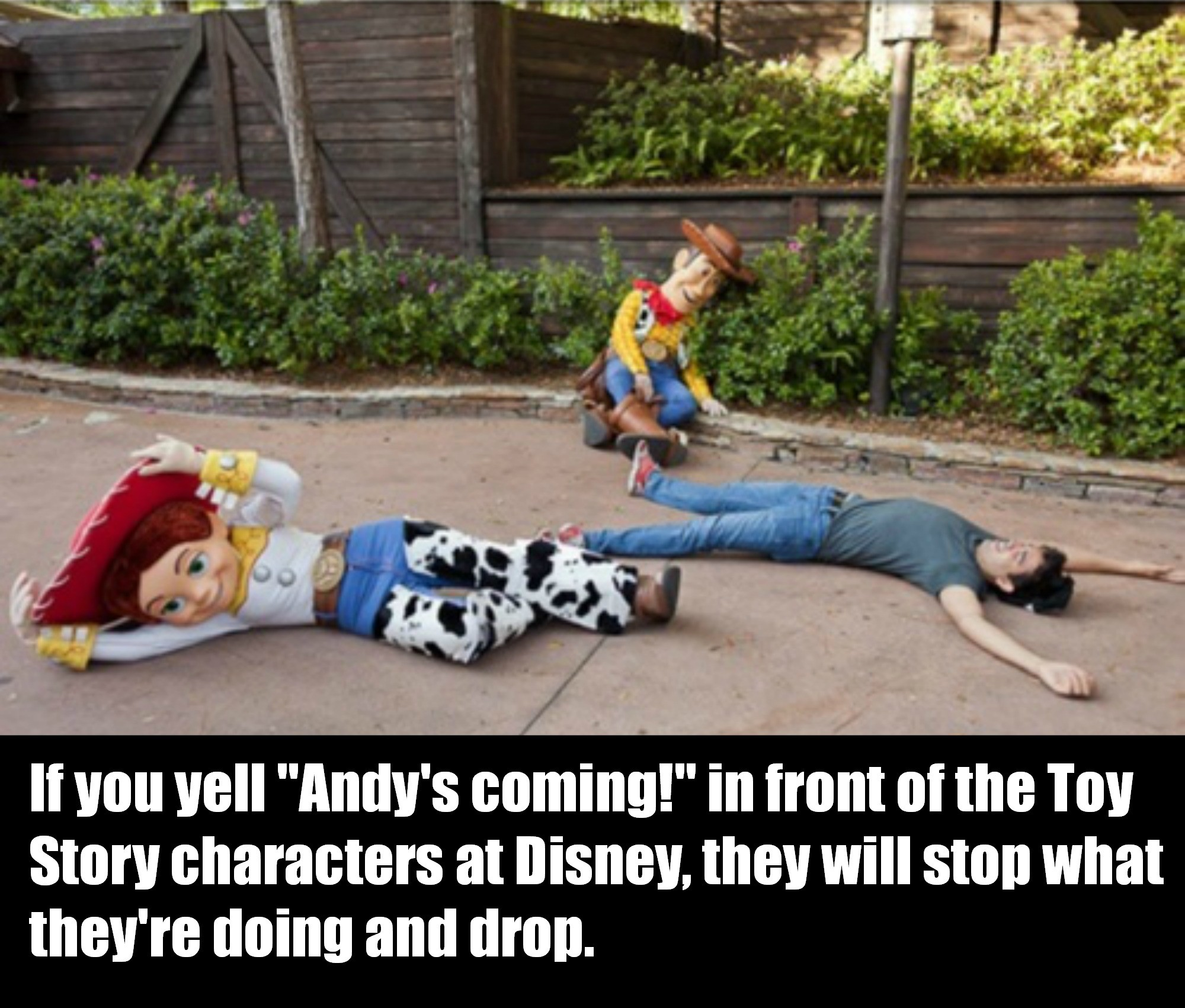 Yelling Andy S Coming At Disneyland Will Make Awesome