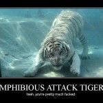 Amphibious Attack Tiger Trains Underwater