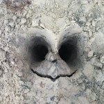 Cool Tim Burton Style Face In The Dirt