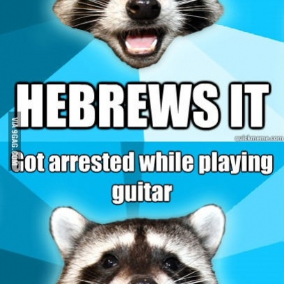 lame pun raccoon - photo #3