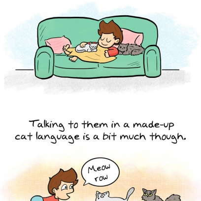 hot spots on cat