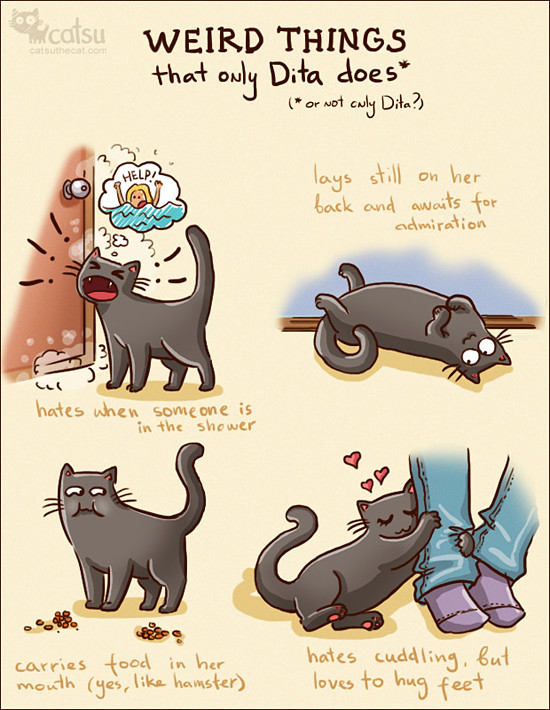 ladybug and cat noir season 2 netflix