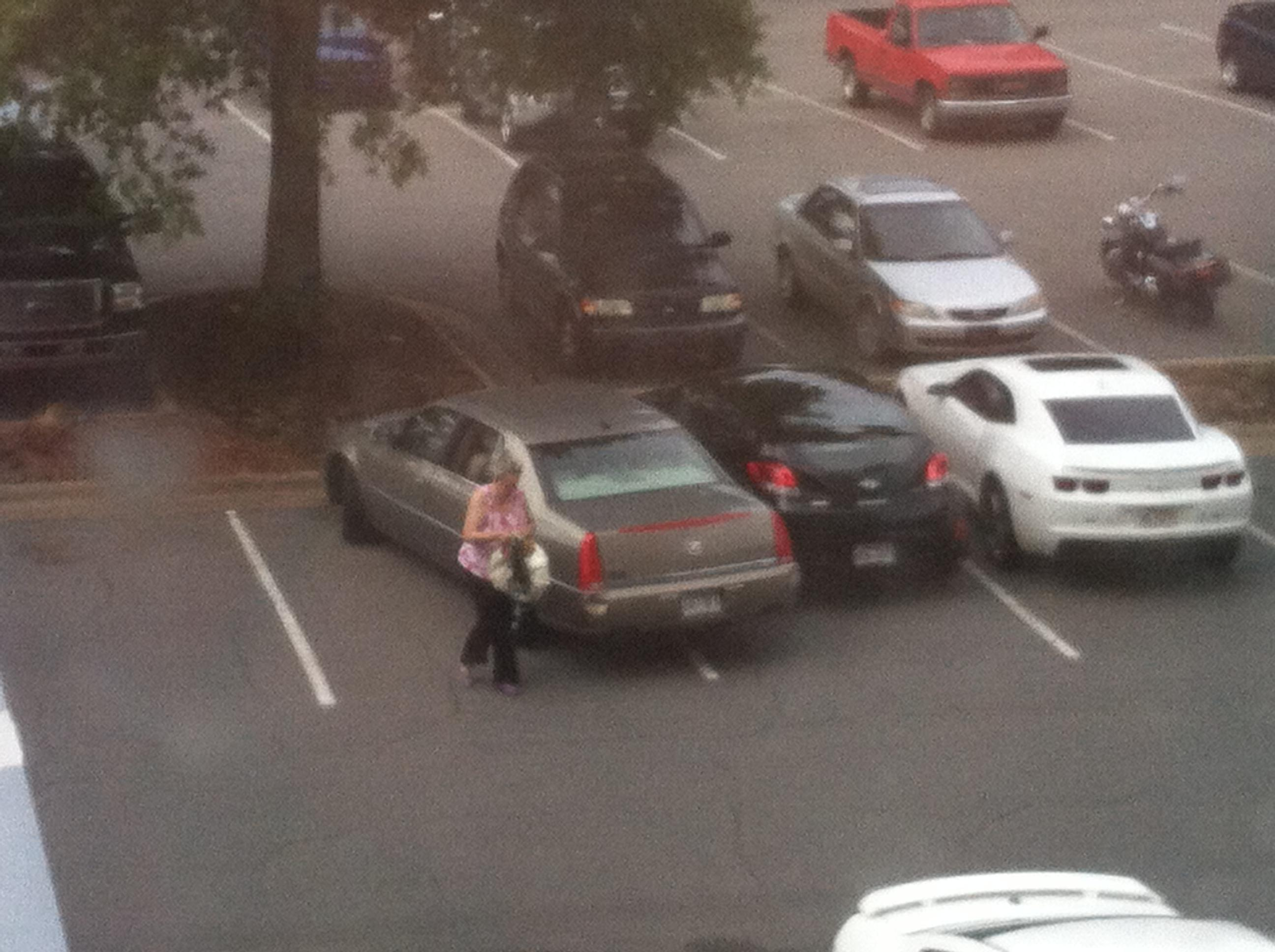 Funny Car Parking Fails