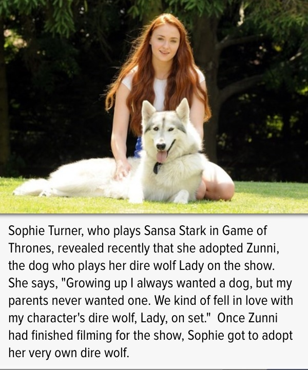 A Lady And Her Dire Wolf: Sophie Turner Quotes. QuotesGram
