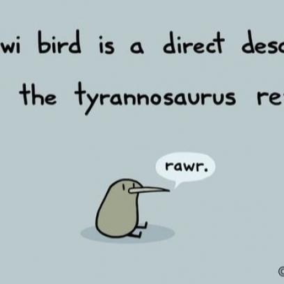 The Kiwi Bird T-Rex Di...