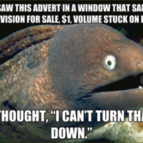 Bad Joke Eel Meme Sees An Advertisment For a $1 Dollar TV