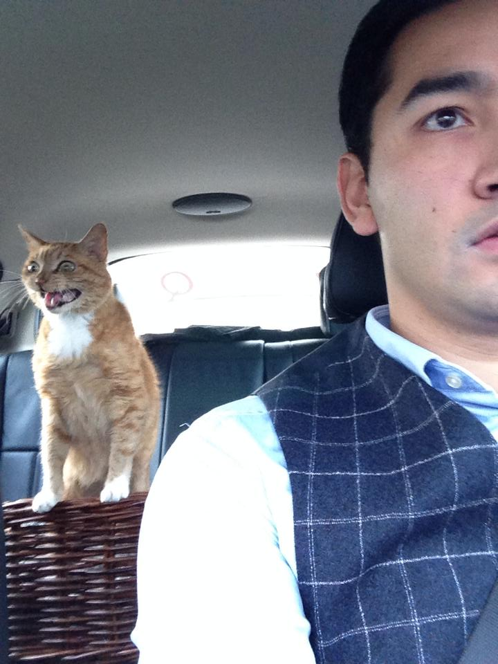 Cat Is Getting In Touch With God While Owner Drivers The Car