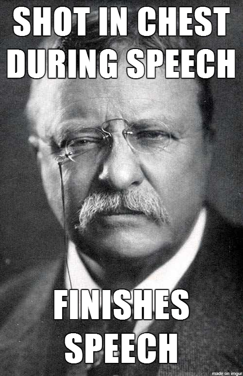Teddy Roosevelt Is The Ron Swanson Of Presidents