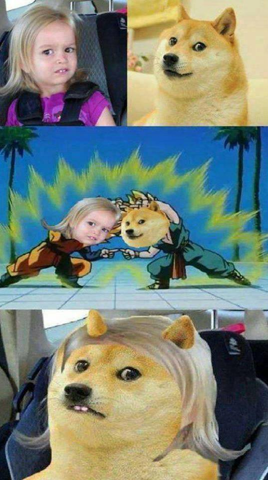 Could You Not Girl Doge DBZ Fusion Meme could you not girl & doge dbz fusion meme,Not A Girl Not A Girl Not A Girl Meme