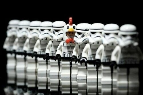 Stormtrooper Gets A Brilliant Chicken Disguise