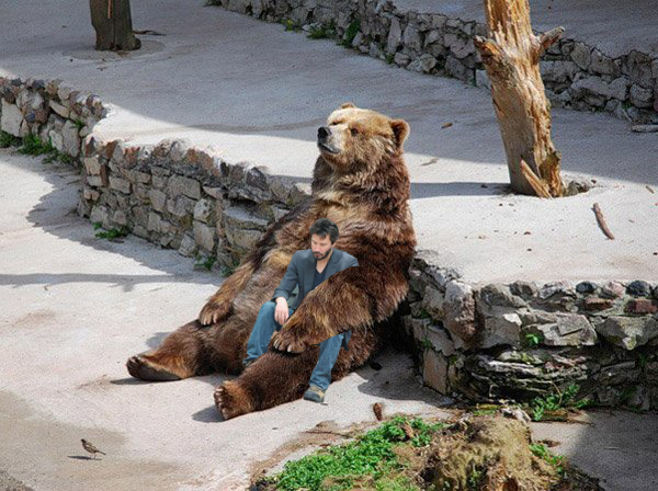 sad bear embraces sad keanu reeves as they wonder the meaning of life